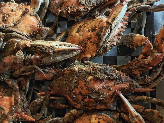 Top beach pick Steamed blue crab atPhillips Crab House. Eatbaketreavel.com
